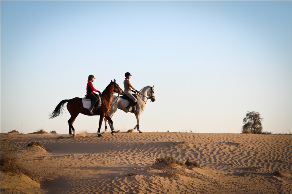 horse riding dubai