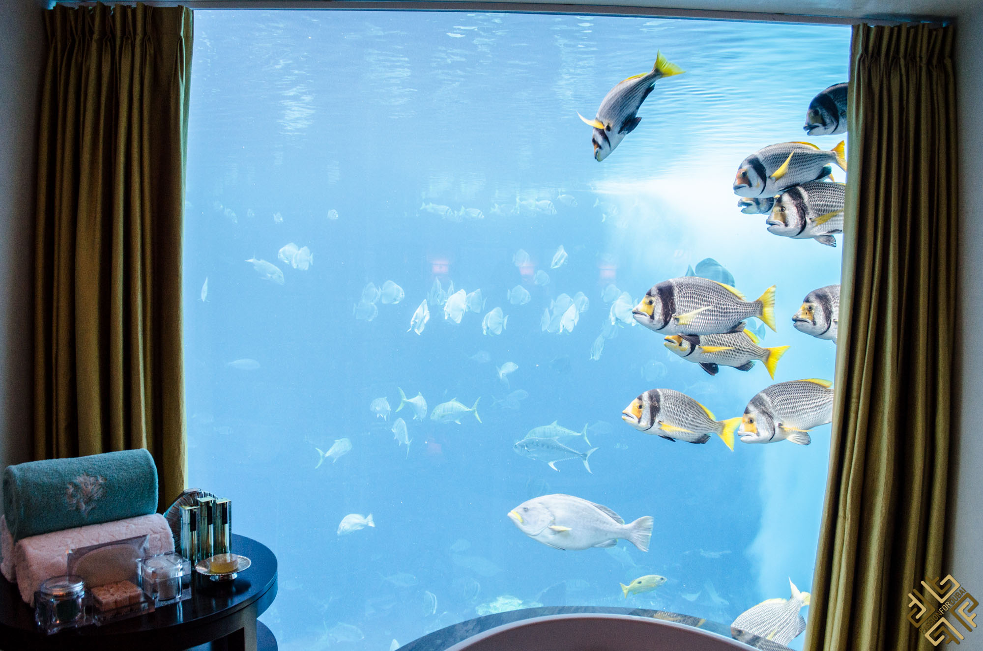 atlantis-the-palm-underwater-suite-3